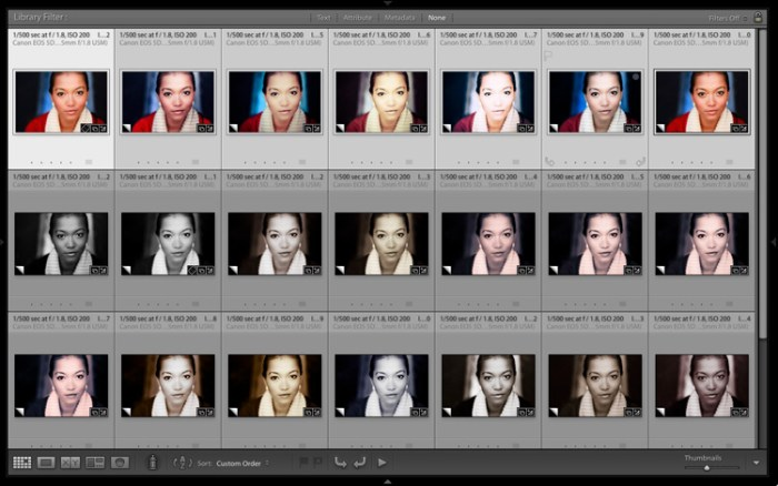 Virtual Copies in Lightroom