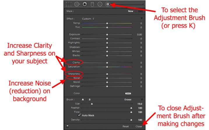Using Lightroom's Adjustment Brush to Sharpen and Add Noise Reduction