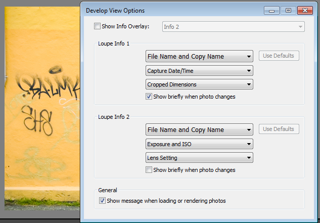 Default settings for the Loupe Info Overlay