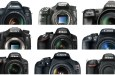 The 20 Most Popular DSLRs Among our Readers