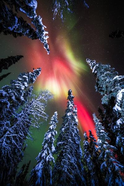 AK FAI aurora 112073 18