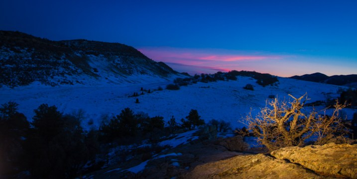 Scrubby pines grow from the rocks of the Dakota Hogback in the foothills of Colorado outside Denver, late evening.
