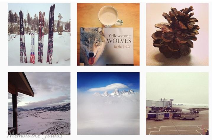 365 Photo Collage