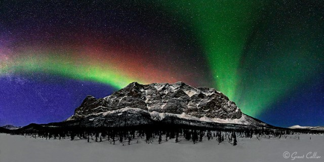 Grant Collier Northern Lights 8