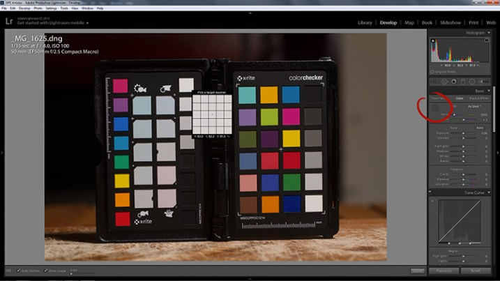 how-to-use-a-grey-card-lightroom-1