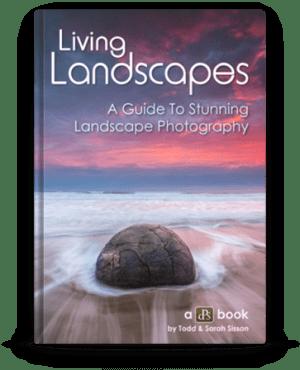 living_landscapes3-363x448
