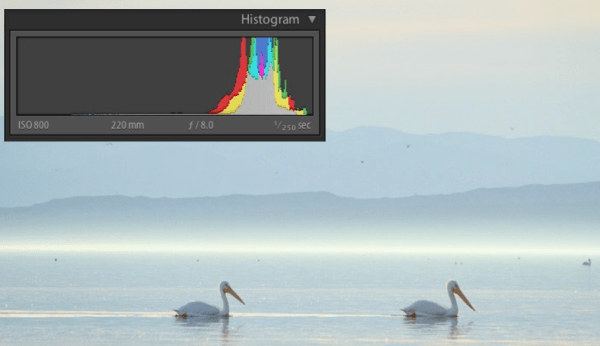 Histograms for Beginners