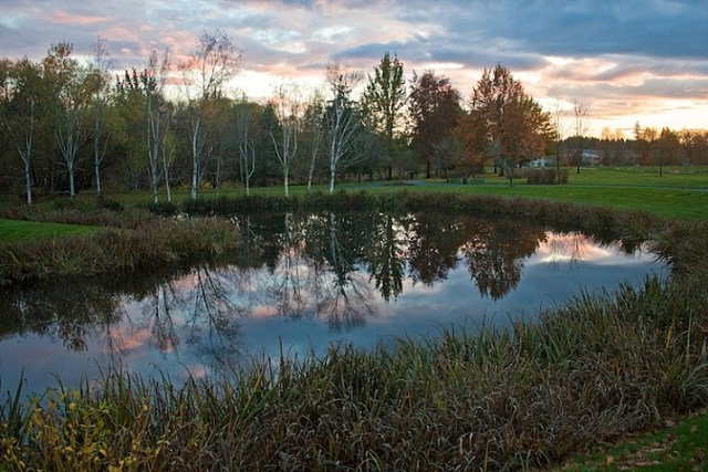 Lake-Vickie-Lewis-Photography-for-dps