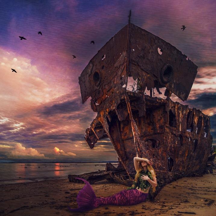 Siren s Sorrow