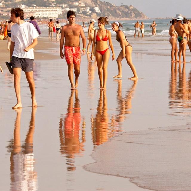 Beach ranked 223
