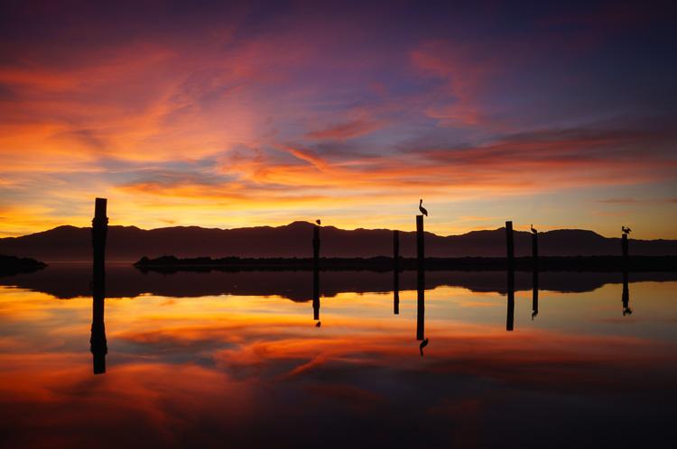 Salton Sea Moments