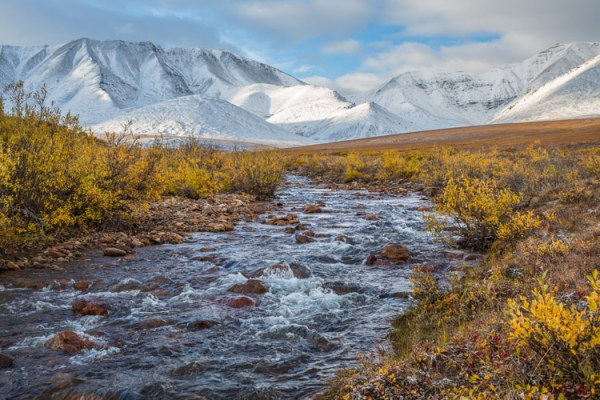 How Two Weeks in the Wilderness with One Prime Lens Restored My Love for Photography