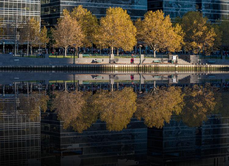 LeanneCole-reflections-13