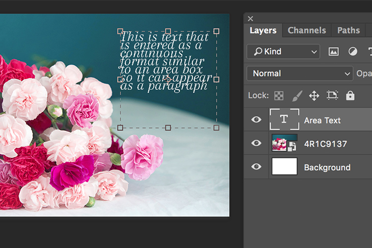 Memorable Jaunts Article for DPS Text tool in Photoshop basics 06