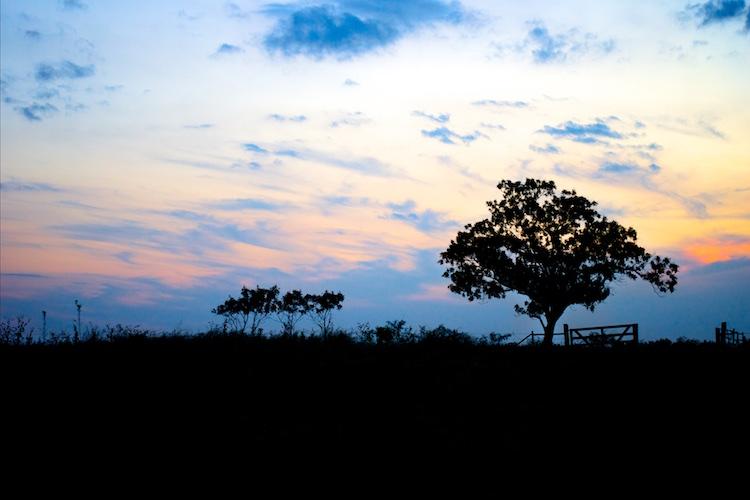 auto-iso-sunset