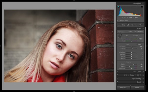 The 6 Most Important Things You Need to Know about Lightroom's Develop Module