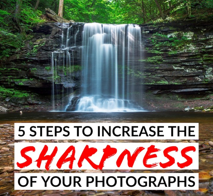 5 Steps to Increase the Sharpness of Your Photographs