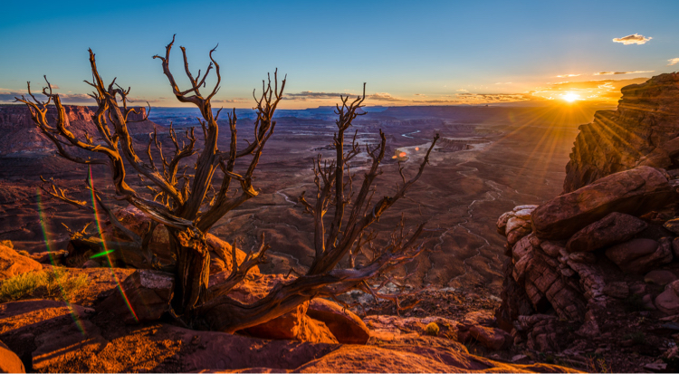 View of Canyonlands National Park at sunset