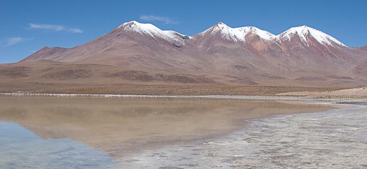 Bolivia-Altiplano-Feb2008-555