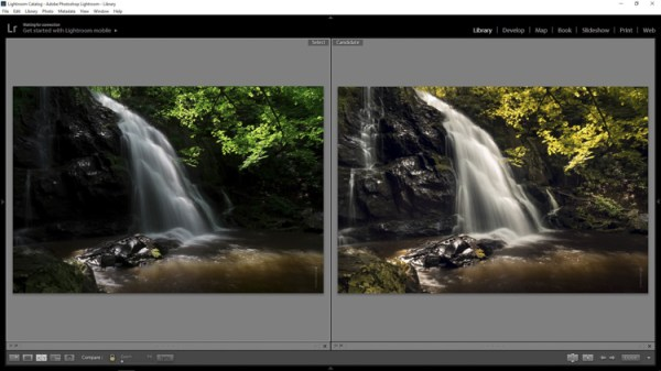 How to Add a Soft Focus Look to Your Images for a Unique Style