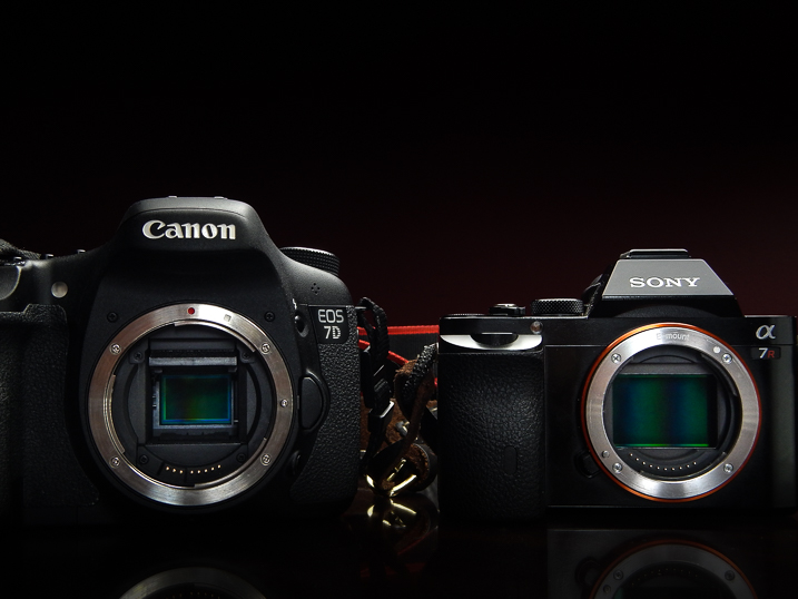 Cameras sony canon which camera is best for you