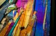 How to Photograph the Magical Microscopic World – Photomicroscopy