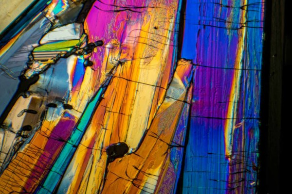 How to Photograph the Magical Microscopic World – Photomicroscopy