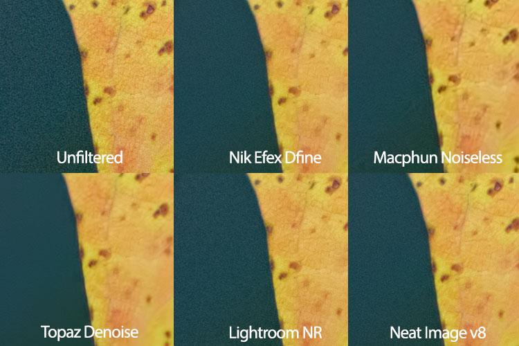 leaf-neat-image-comparison