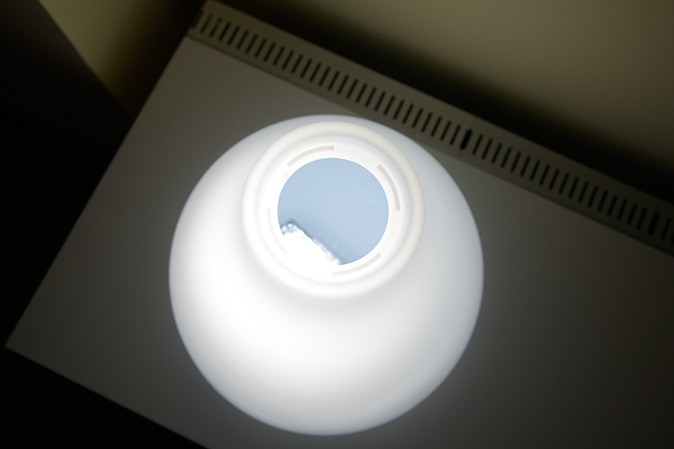 spectra-light-in-shade