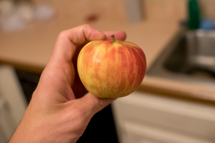 Not much to see here. Just a plain ordinary apple.