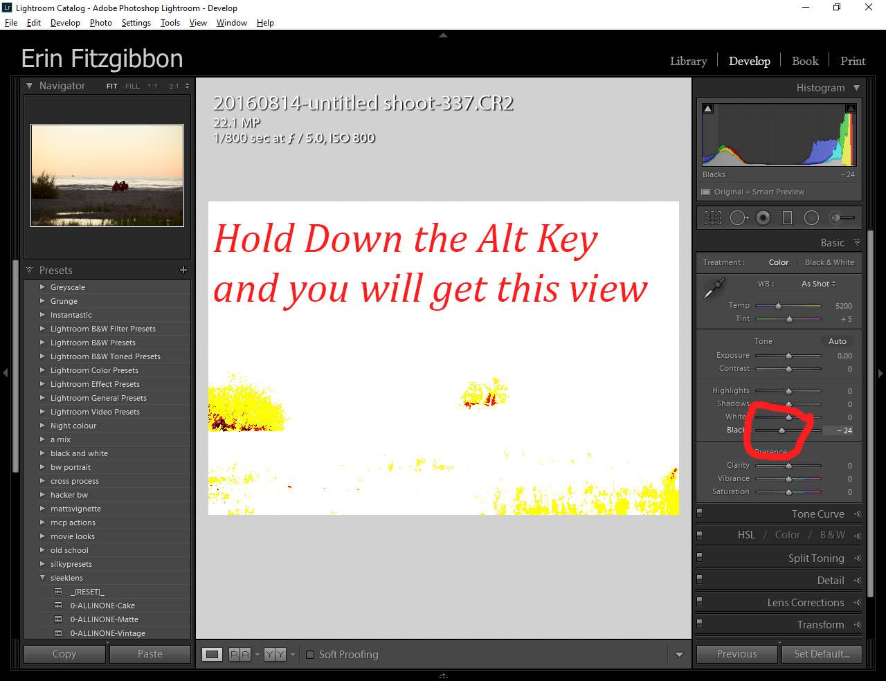 Alt key Lightroom Develop module black point slider.