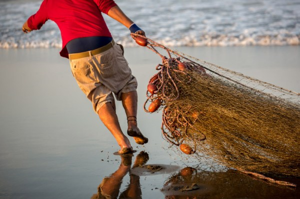 A Collection of 25 Images of Fishermen at Work