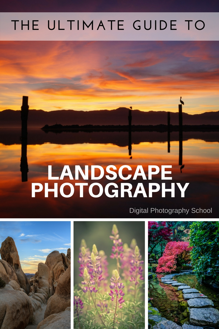 the dps ultimate guide to landscape photography rh digital photography school com Best Lenses for Beginner Photographers Beginner Photography Actual