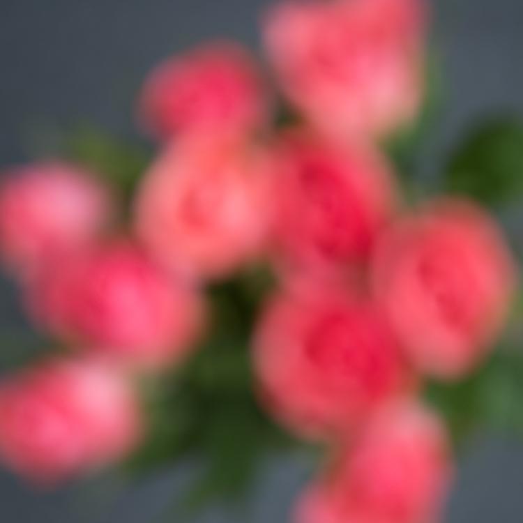 In camera multiple exposures 11