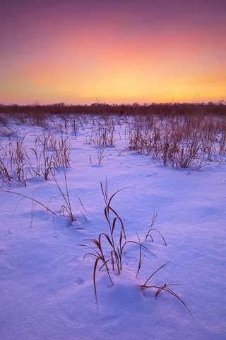 Tips for Photographing the Prairie Landscape in Winter - Be Open