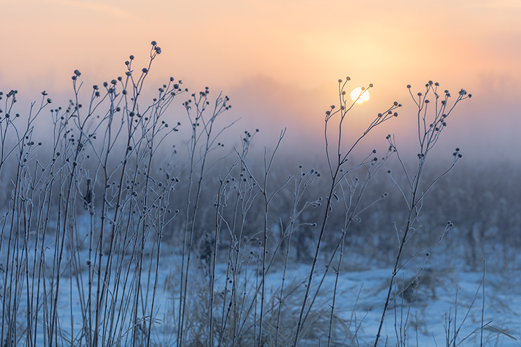 Tips for Photographing the Prairie Landscape in Winter - Watch The Weather
