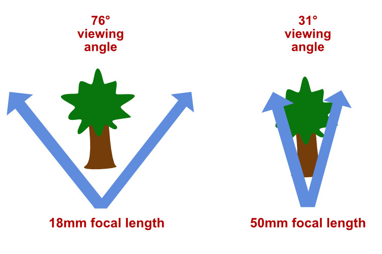 Prime Lenses: Can you really zoom with your feet?