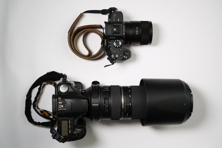 Mirrorless versus dslr - The dPS Absolute Beginner's Guide to Photography