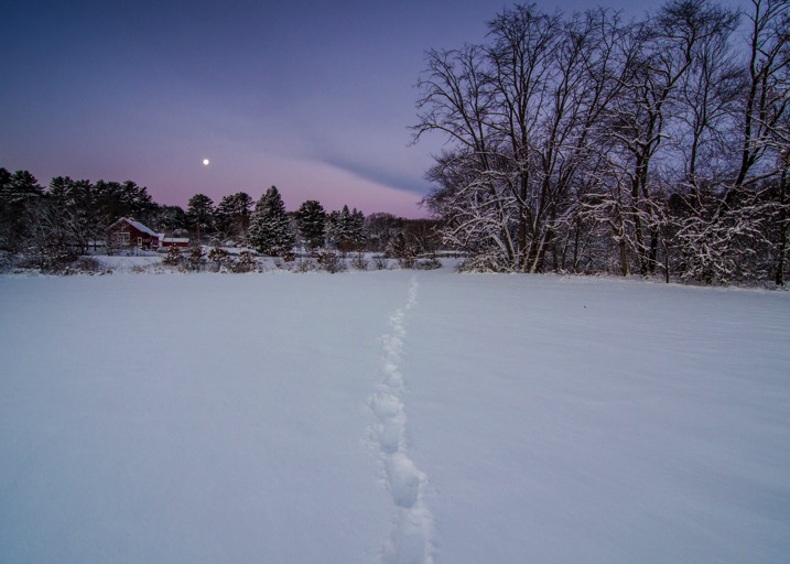 Snow leading lines - The dPS Absolute Beginner's Guide to Photography