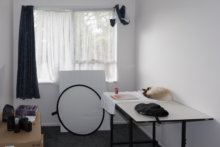 Image: Still life studio with reflector, lenses, still life props and a cat asleep in his favorite s...