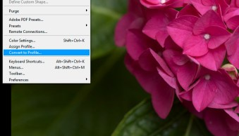 6 Color Settings in Photoshop That You Need to Know