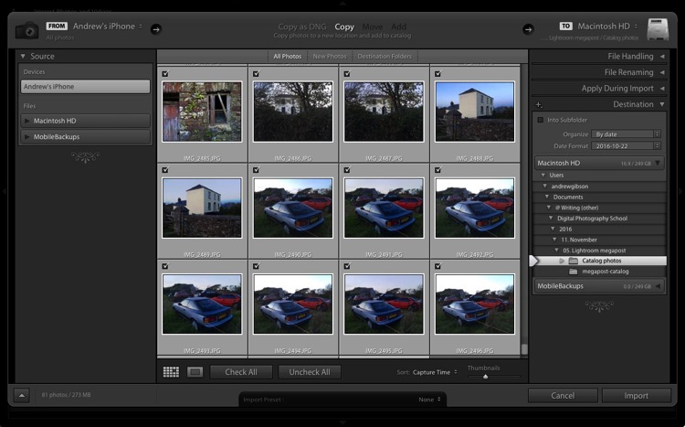 The Ultimate Guide to Getting Started in Lightroom for Beginners