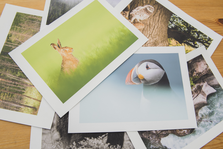 Creating prints as a final output