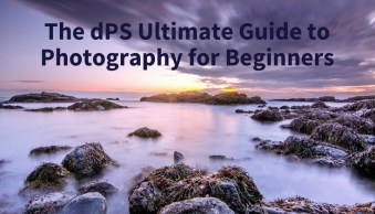 The dPS Ultimate Guide to Photography for Beginners