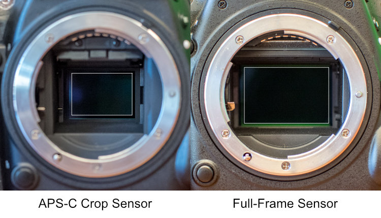 How to Understand the Differences Between Full-Frame Versus Crop-Sensor Cameras