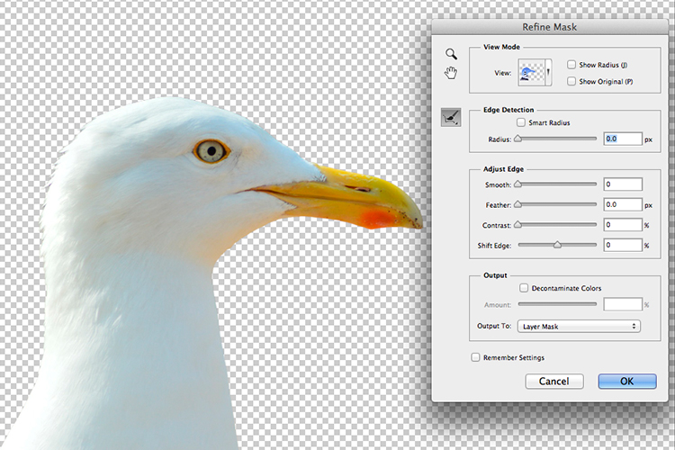 https://i2.wp.com/digital-photography-school.com/wp-content/uploads/2017/05/seagull-isolated-refine-mask.jpg?resize=750&ssl=1