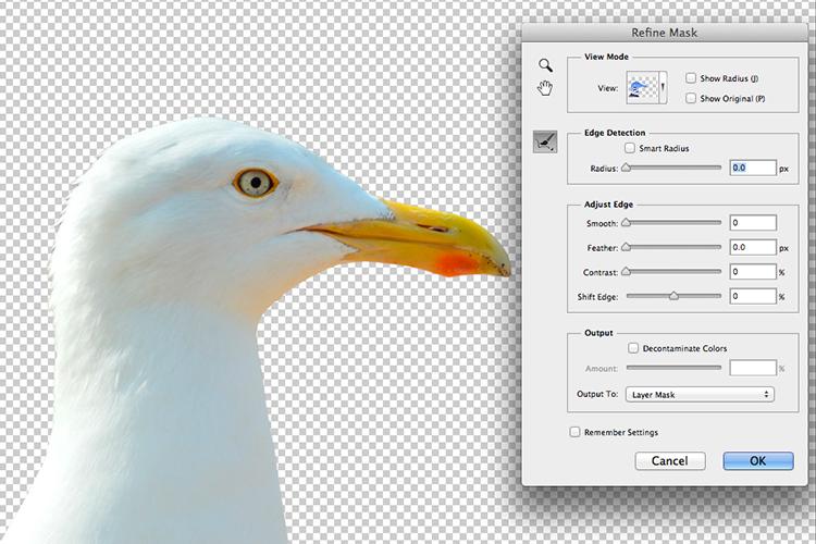 https://i2.wp.com/digital-photography-school.com/wp-content/uploads/2017/05/seagull-isolated-refine-mask.jpg?resize=750&ssl=1