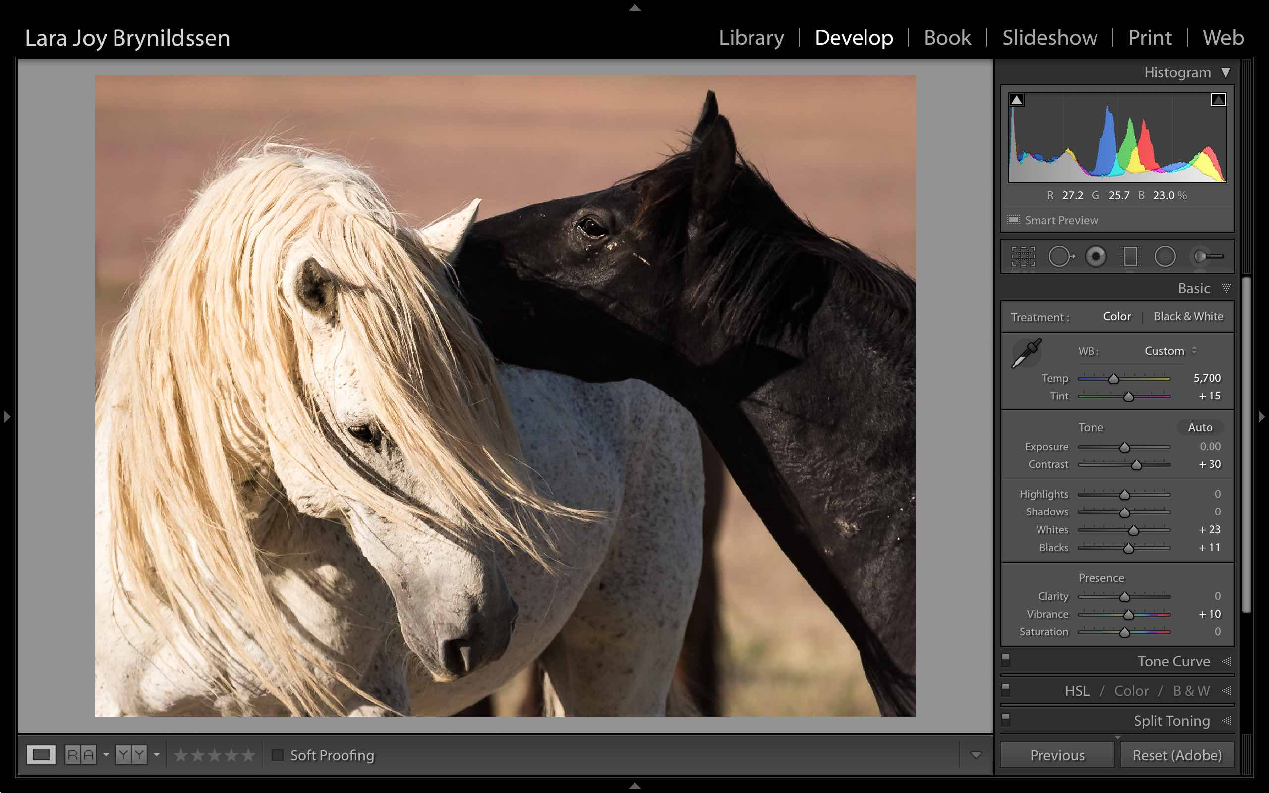 Photoshop Spot Healing Brush Tool - Lightroom adjustments