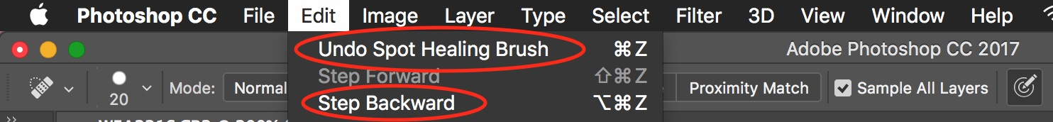 Photoshop Spot Healing Brush Tool - undo