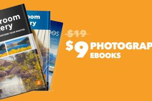Announcing...our mid year sale! Starting with ebooks and posing guides for $9